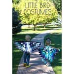 Eagle and Peacock Costumes