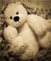 Teddy Bear Patterns Free Sewing Patterns For Teddy Bears